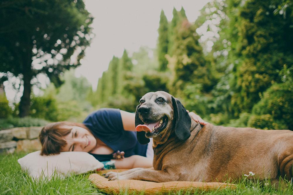 szczęśliwy pies w ogrodzie