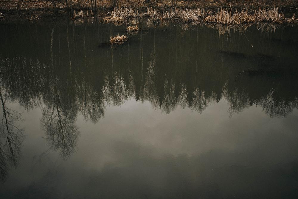 jezioro odbicie drzew