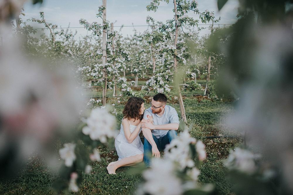 sesja w jabłoniowym sadzie zakochani zieleń