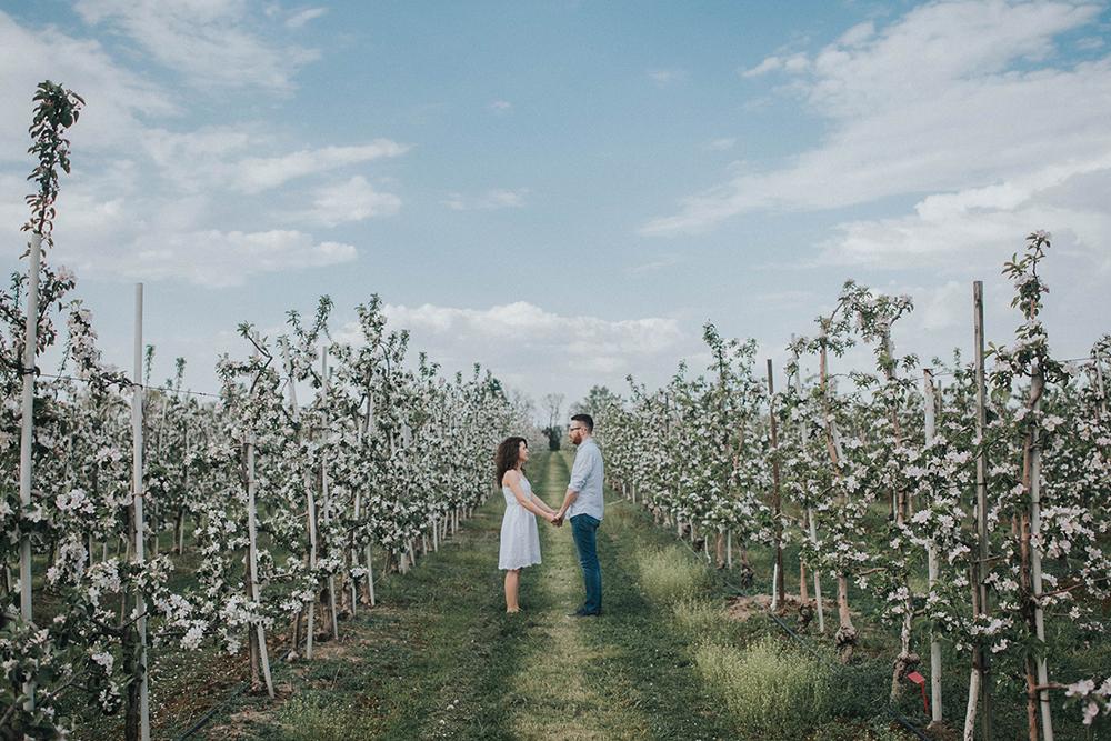 sesja ślubna sad jabłonie poznań