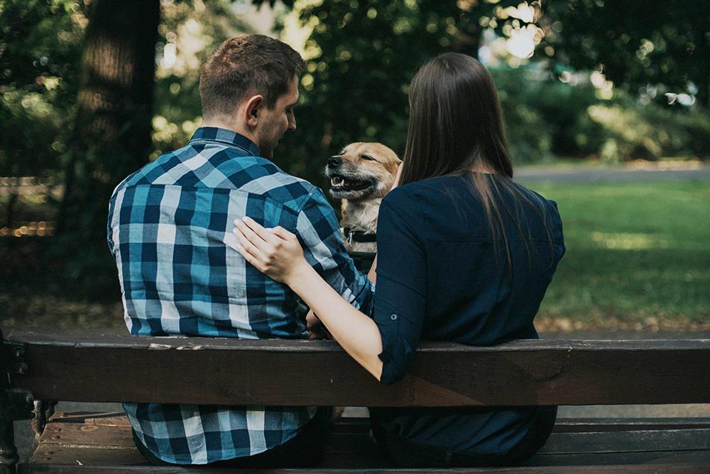 sesja narzeczeńska z psem sołacz park poznań