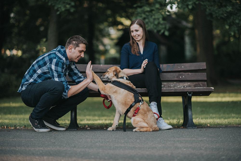pies rodzina sesja z psem sołacz