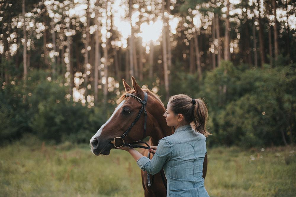 zachód słońca sesja portretowa konie