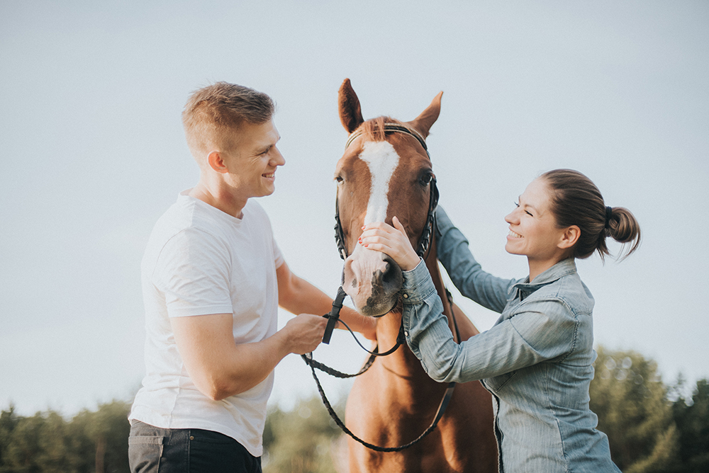 zachód słońca sesja narzeczeńska konie