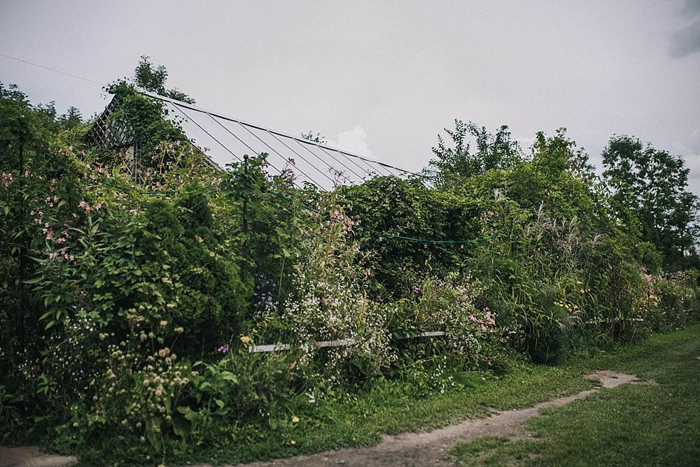 stara oranżeria w mrokowie ślub zieleń plener